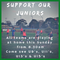 Support our Juniors